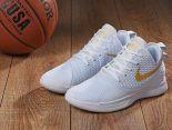Nike Lebron Witness 2019新款 見證3代男生運動籃球鞋